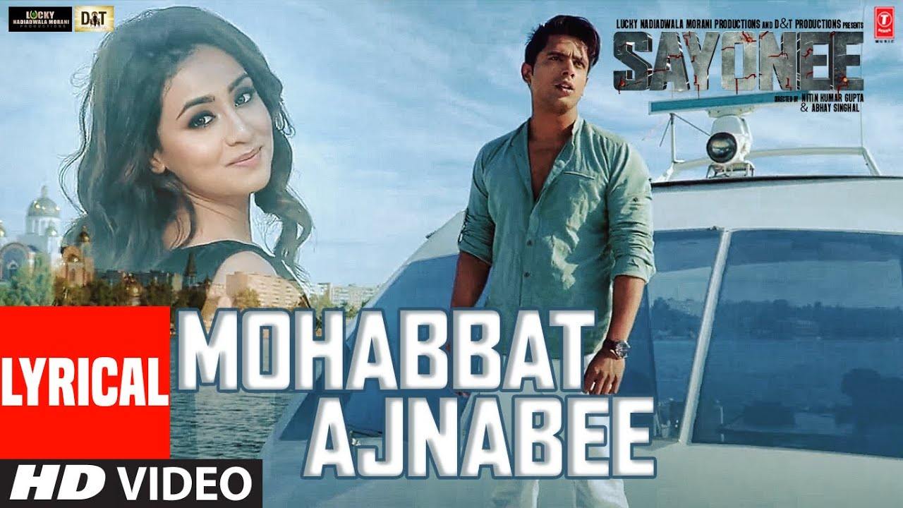 Mohabbat Ajnabee Song Lyrics