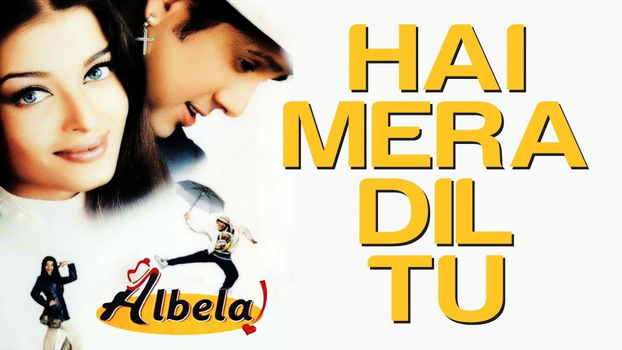 Hai Mera Dil Tu Song Lyrics