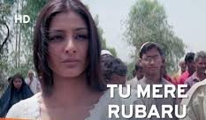 Tu Mere Rubaru Hai Song Lyrics